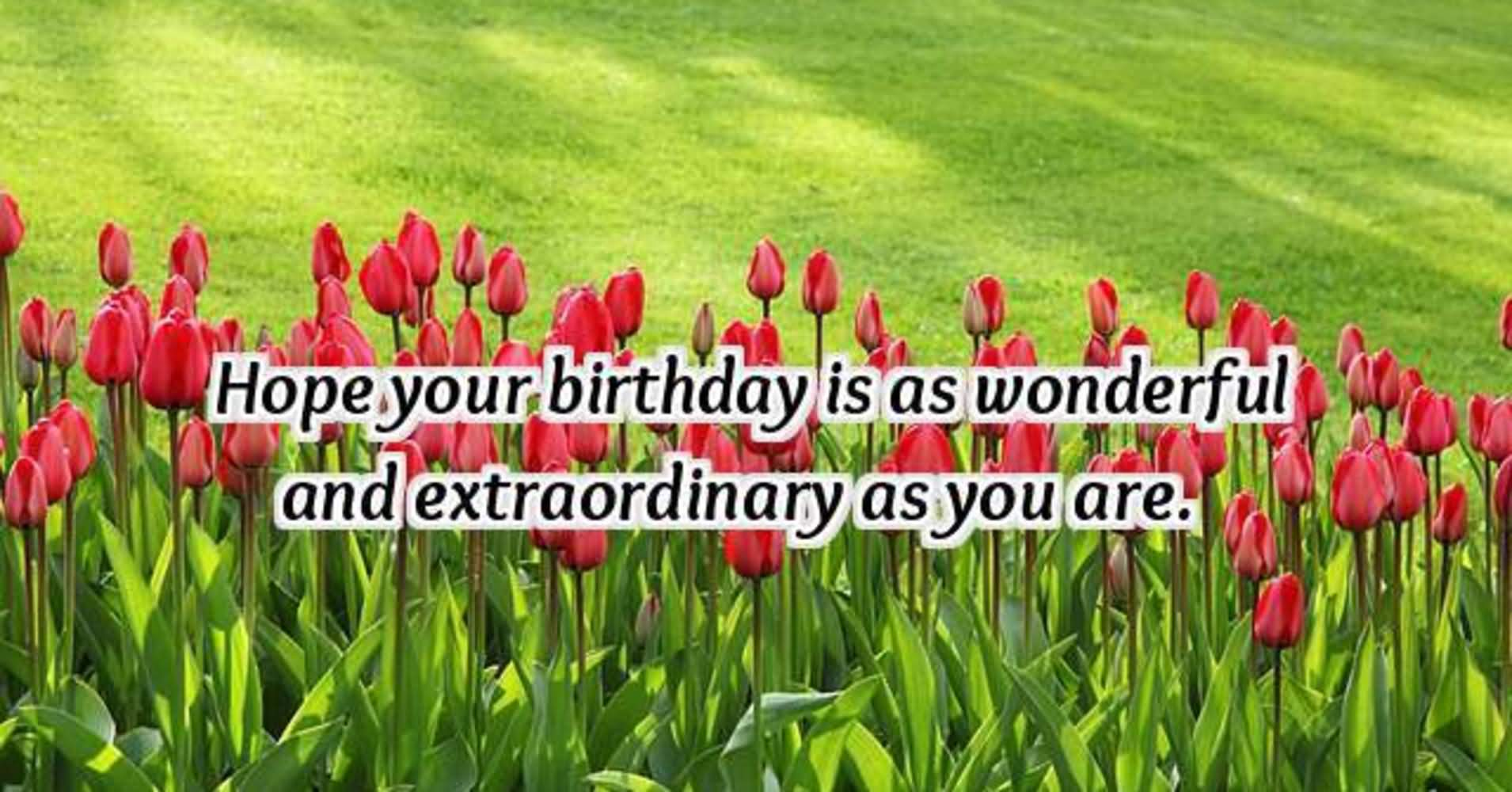 Hope Your Birthday Is As Friend Birthday Wishes