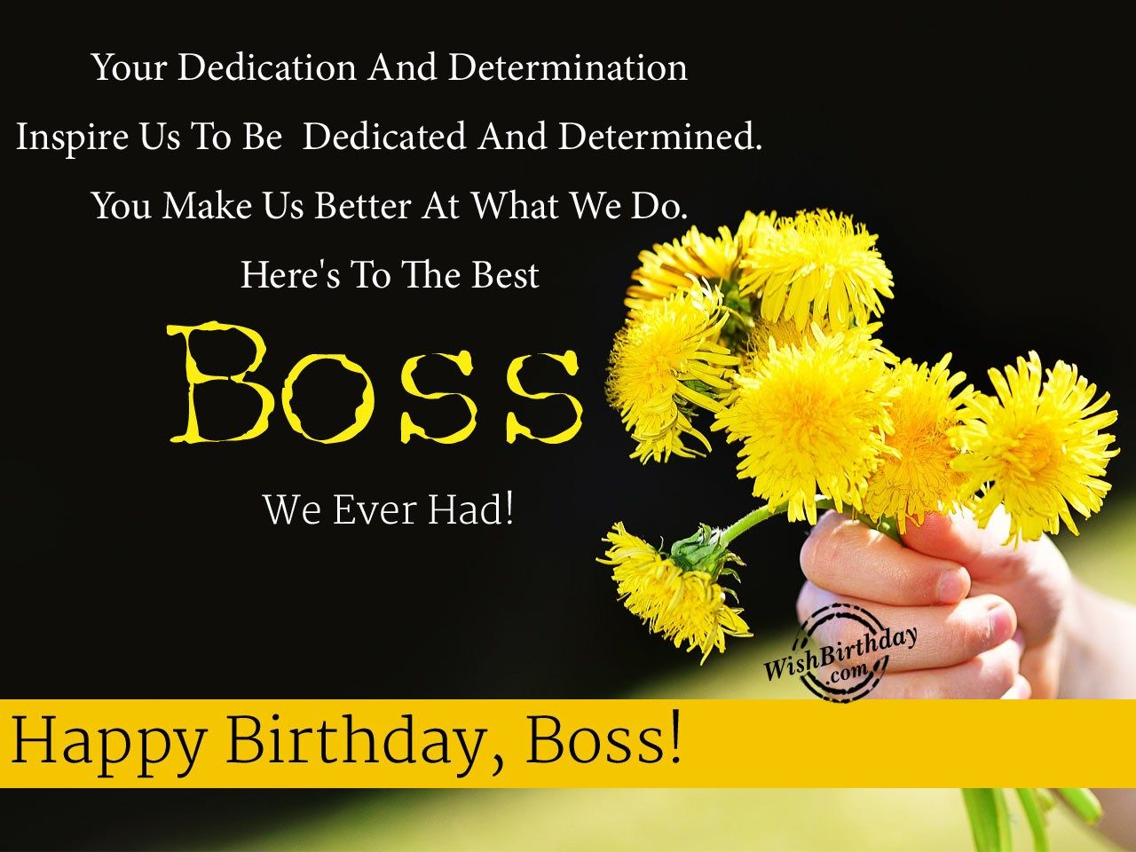 Your Dedication And Determination Boss Birthday Wishes