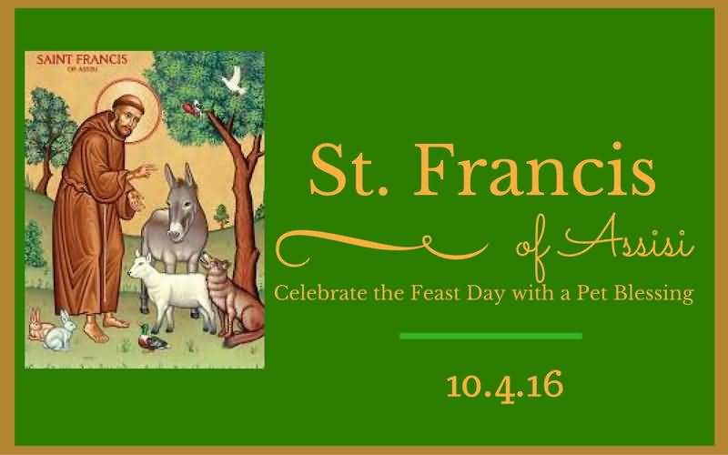 Celebrate the Feast of St Francis of Assisi