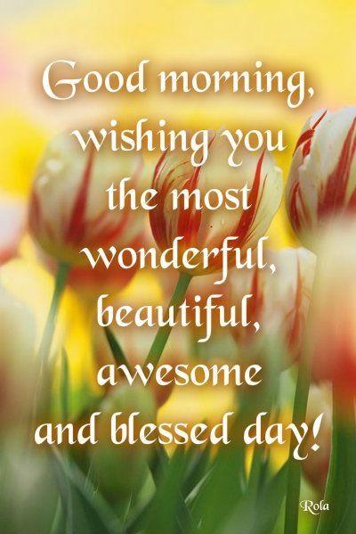 Most Wonderfull Beautiful Day