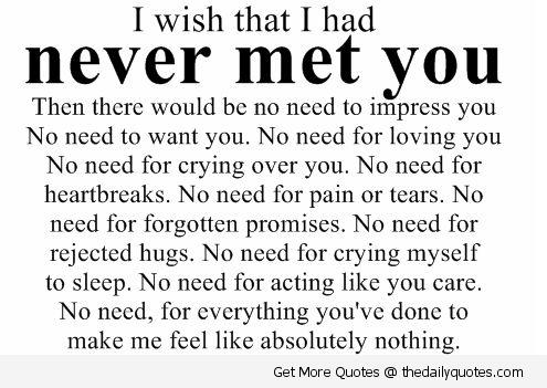 I Wish That I Had Never Met You