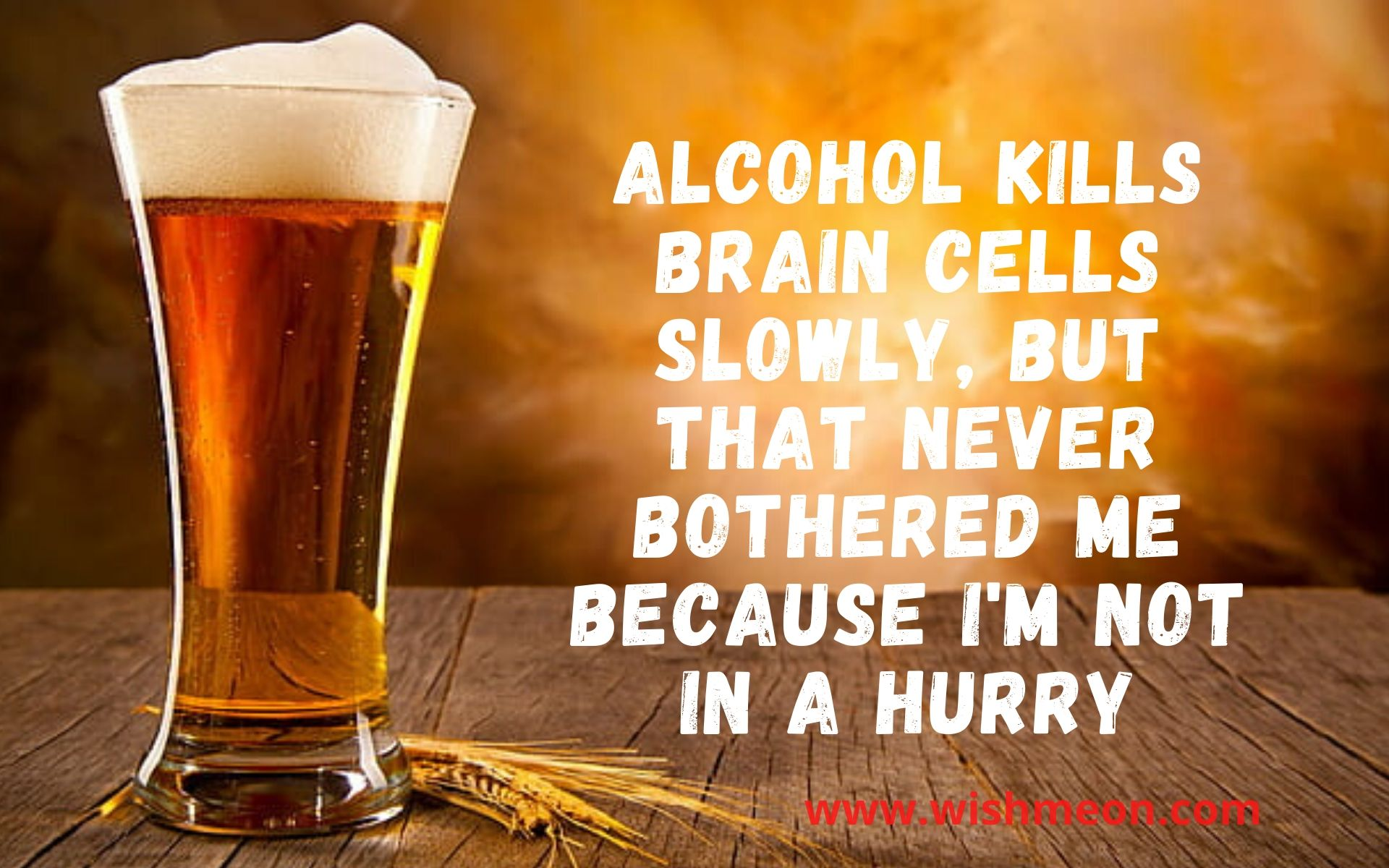 Alcohol Kills Brain Cells Slowly But That Never Bothered