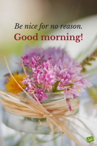 Be Nice For No Reason Good Morning