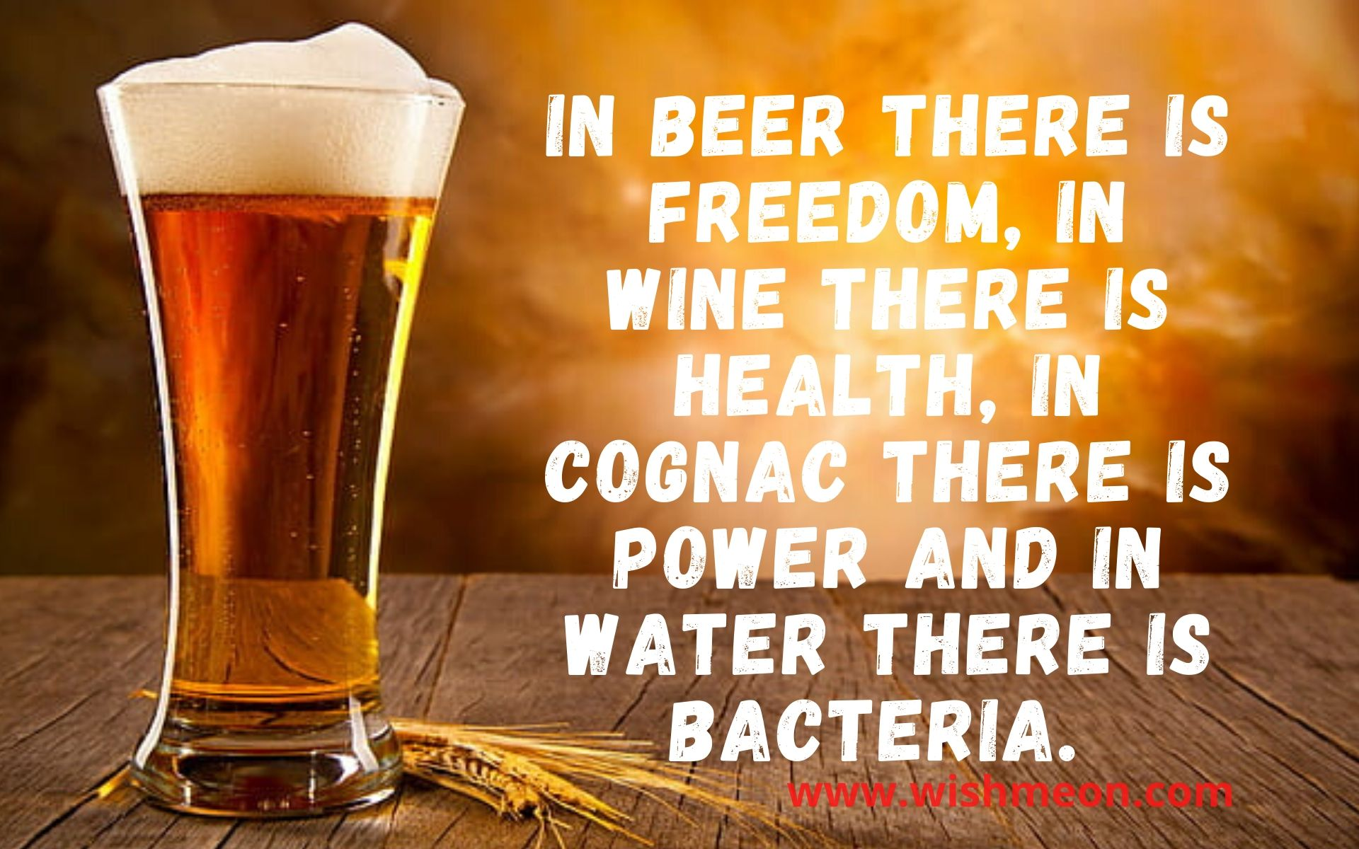 I Beer There Is Freedom In Wine There Is Health