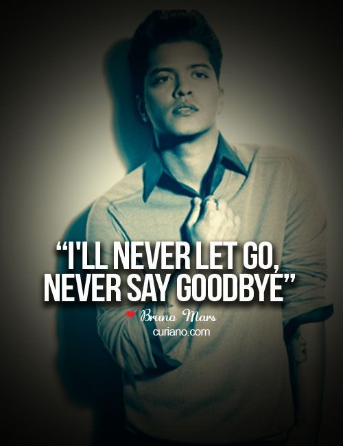 I Will Never Let Go Never Say Goodbye