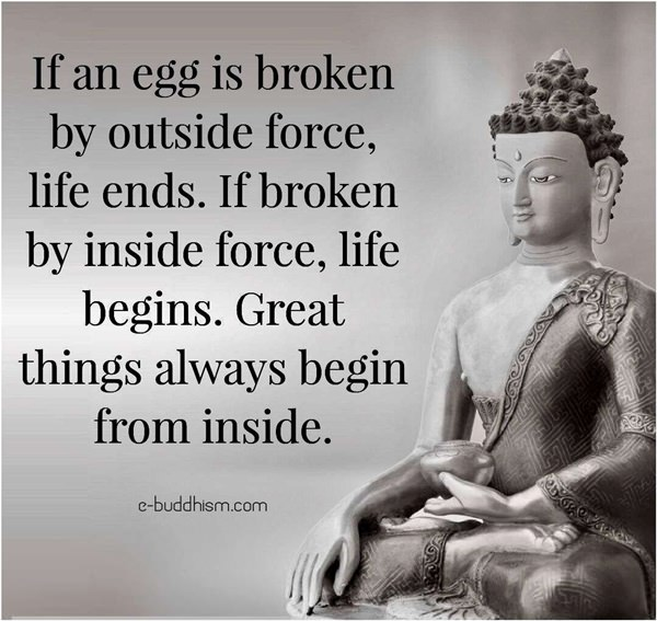 If An Egg Is Broken By Outside