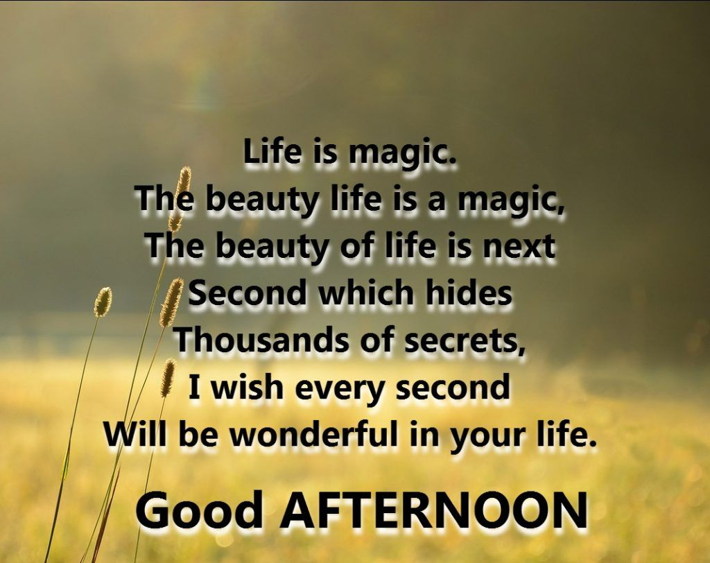 Life Is Magic The Beauty Life Is A Magic