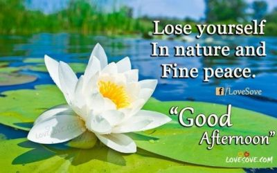 Lose Yourself In Nature And Fine Peace