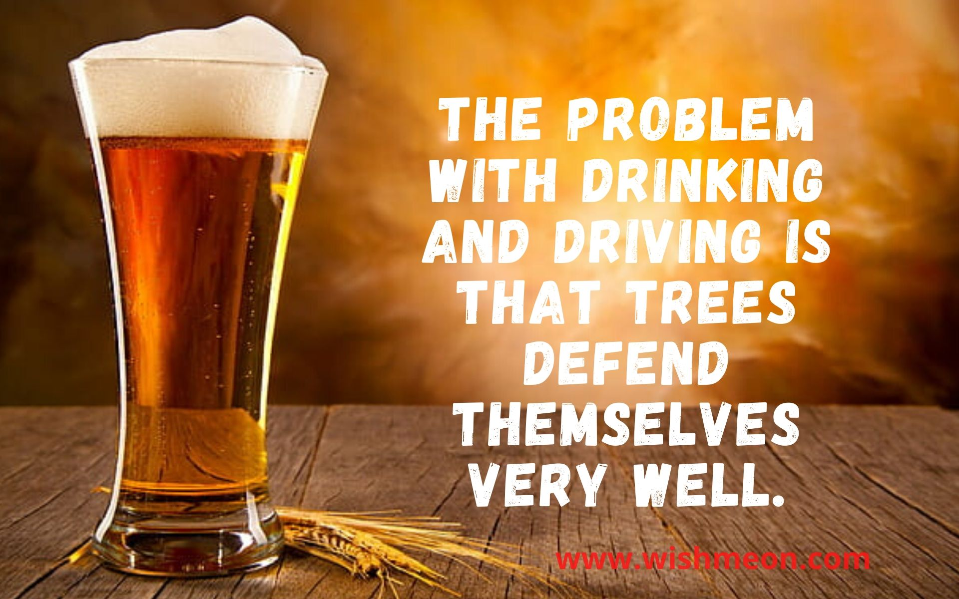 The Problem With Drinking And Driving Is That Trees
