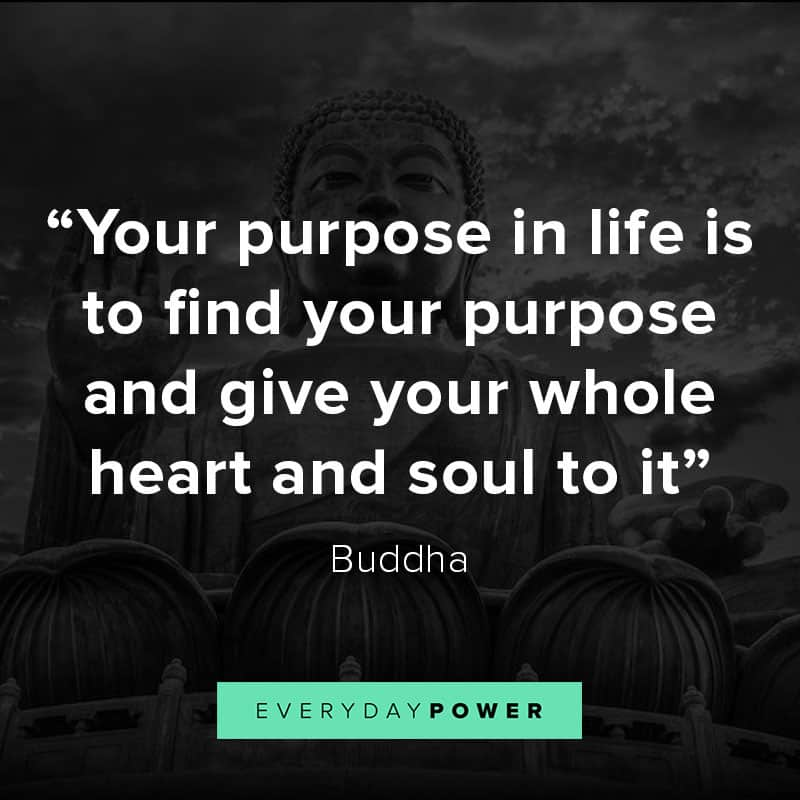 Your Purpose In Life Is To Find
