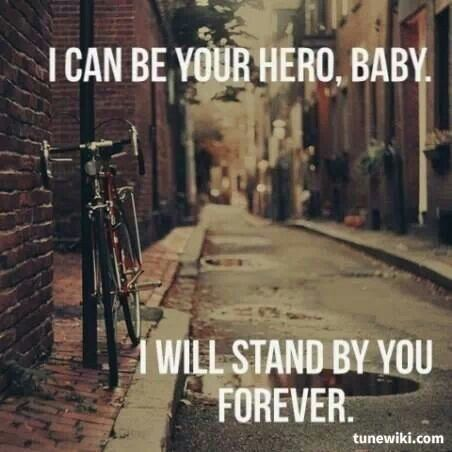 I Can Be Your Hero Baby I Will Stand By You Forever