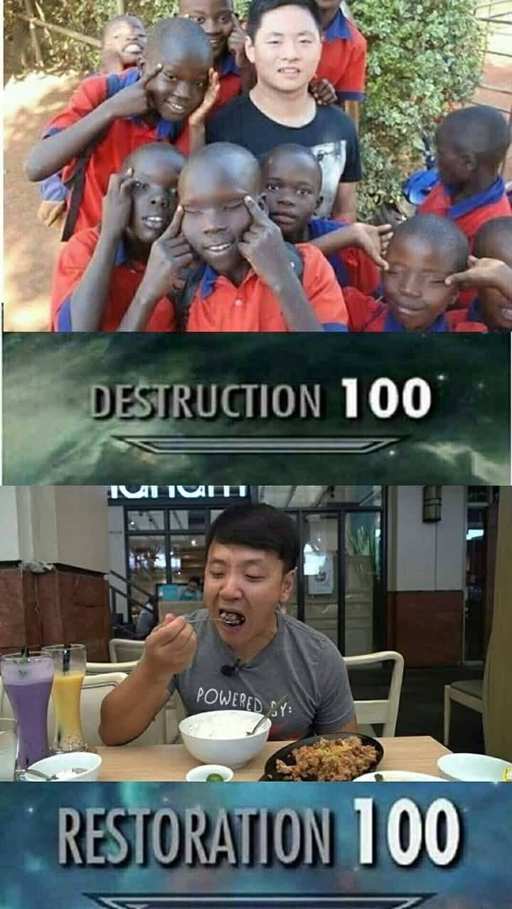Destruction 100 Restoration 100 African Meme