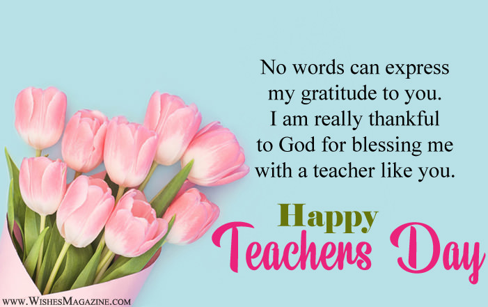 No Word Can Express My Gratitude To You Thank You Happy Teacher's Day Wishes Images